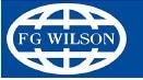Grupo electrogeno FG Wilson